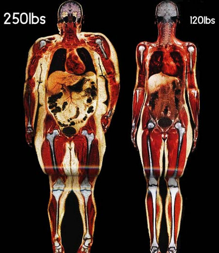 body-scans