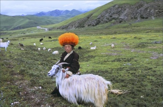 Orange hat boy in Degang Valley, Kham, eastern Tibet, 2005