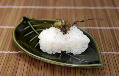 insect_sushi_02
