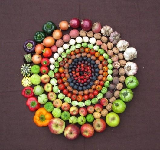 Circle-of-life-e1307965604908