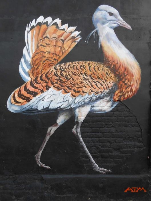 oiseau-danger2