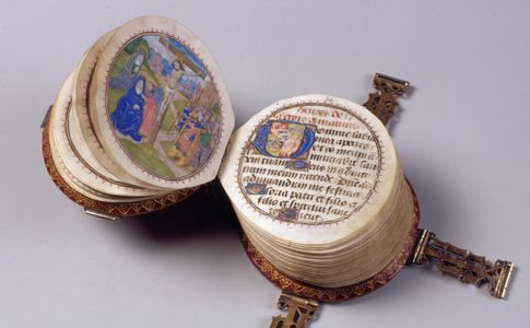 CodexRotundus1