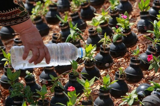 tear-gas-flower-pots-palestine-11-640x426