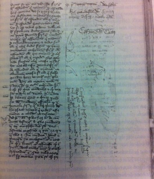 chat_manuscrit