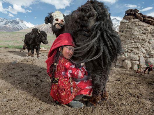 kyrgyz-afghanistan-food-yaks_82987_990x742