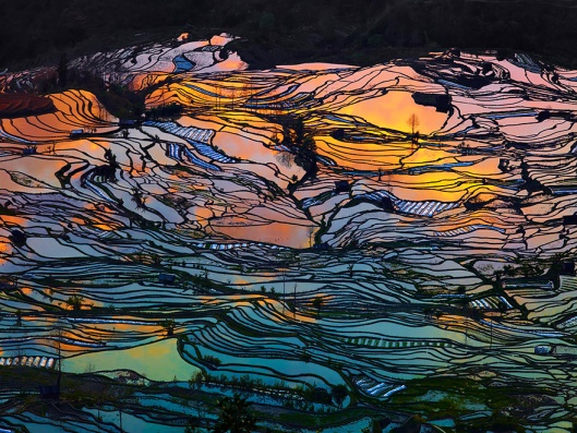 terraced-rice-fields-1__880