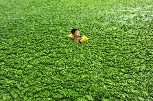 pollution-environmental-issues-photography-china-5