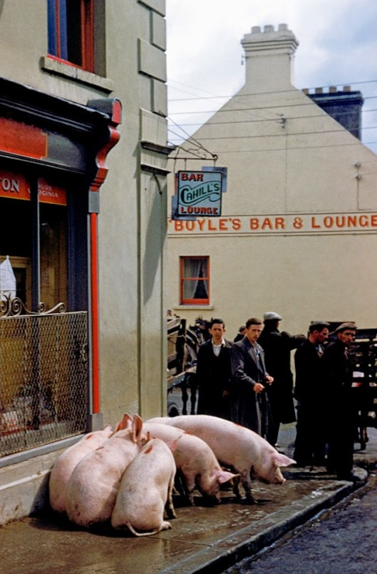Ireland, 1954 (1)