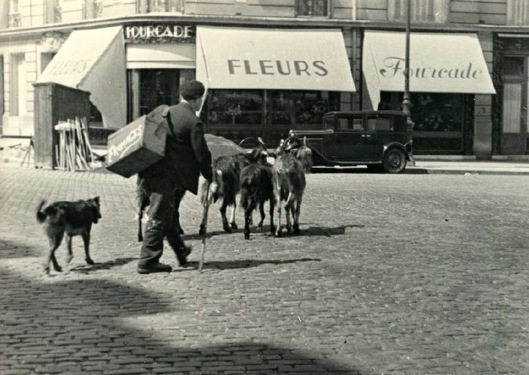 Everyday Life in France in the Early 1930s (10)