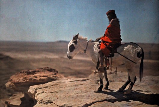 1916 A Hopi Indian and his burro stand at the edge of a high mesa