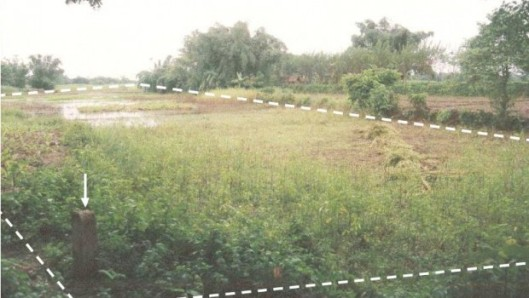 Enclave1-620x350