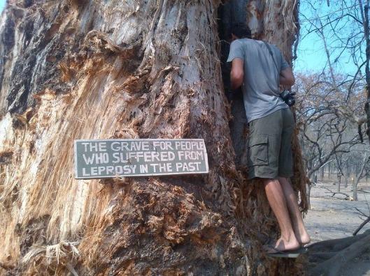 leper-tree-malawi-3%255B2%255D