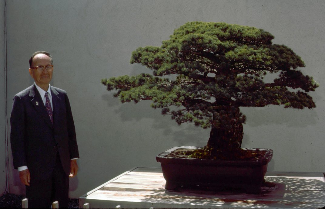 1979_masaru_yamaki_with_tree_2.jpg__1072x0_q85_upscale