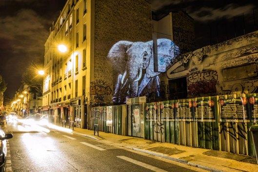 PARISIAN-WILDLIFE11__880