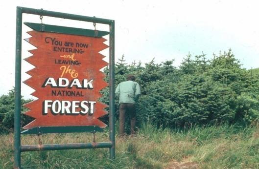adak-national-forest-1[2]