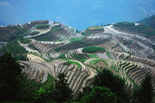 longsheng-rice-terraces-guilin-china