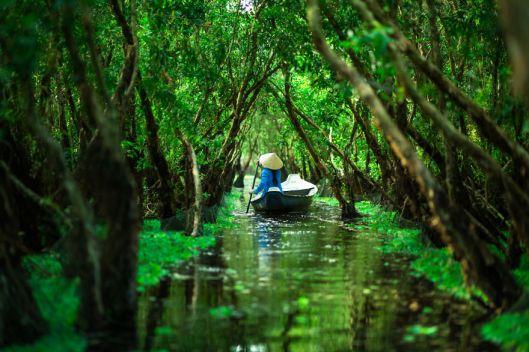 Forêt Tra Su (Chau Doc)