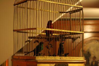 Cage à oiseaux de la marque Bontems, Paris, vers 1890. Musée Baud, L'Auberson.