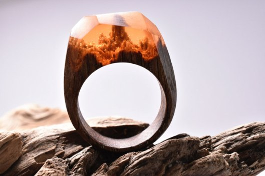 miniature-scenes-rings-secret-forest-1