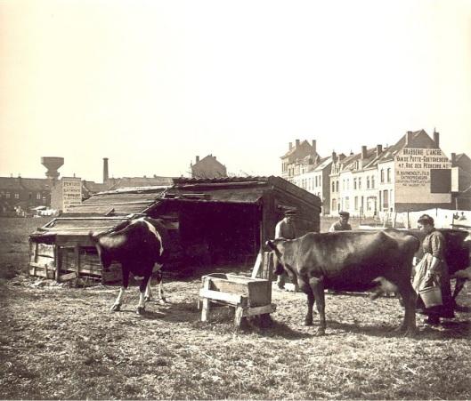 belgium-during-the-1900s-12
