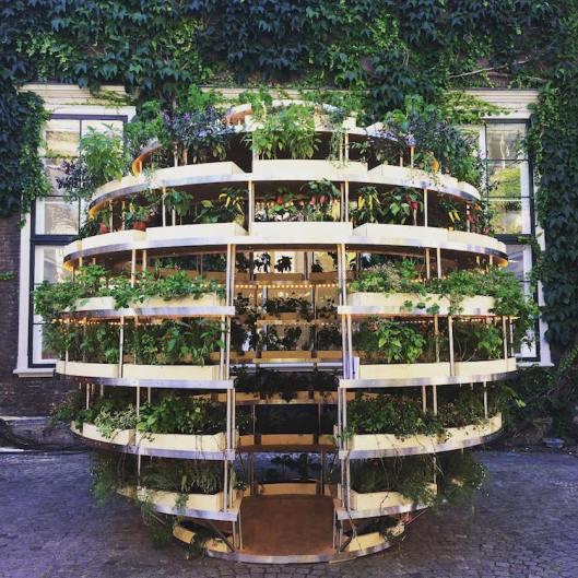 growroom1