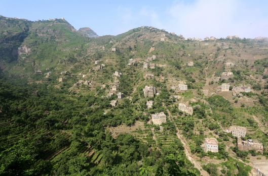 "Houses are seen in the mountains, in the Jafariya district of the western province of Raymah, Yemen May 21, 2016. REUTERS/Abduljabbar Zeyad SEARCH ""MOUNTAINTOP"" FOR THIS STORY. SEARCH ""WIDER IMAGE"" FOR ALL STORIES.  - RTSNCW1"