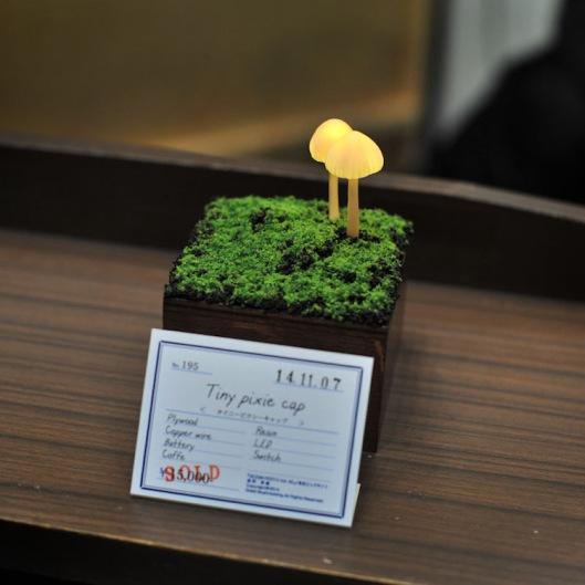5yukiotakanomushroomlights