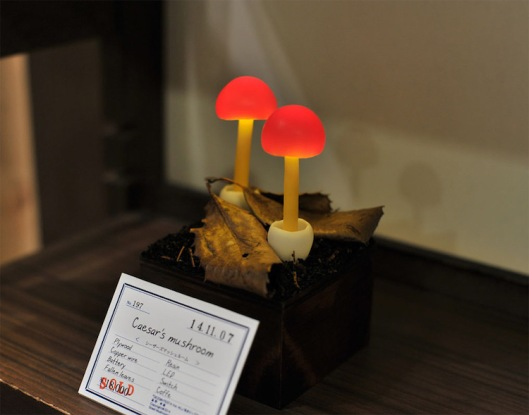 6yukiotakanomushroomlights