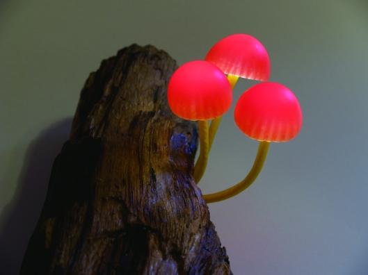 yukiotakanomushroomledlights1