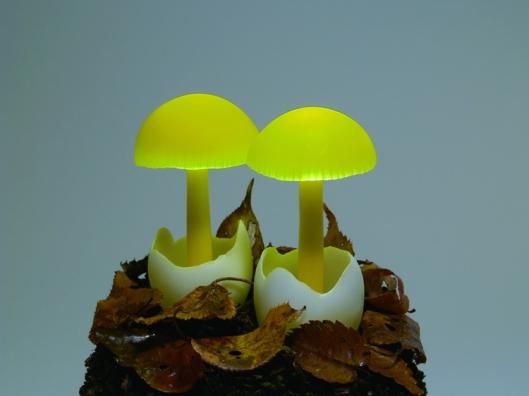 yukiotakanomushroomledlights2